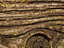 vecchia fine di legno su Fotografie Stock