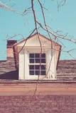 Vecchia finestra attraverso gli alberi Fotografia Stock Libera da Diritti