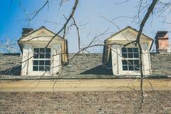 Vecchia finestra attraverso gli alberi Fotografie Stock
