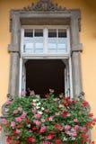 Vecchia finestra con i fiori fotografia stock