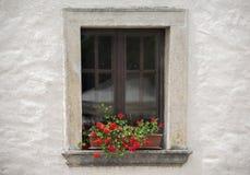 Vecchia finestra con il fiore nel giorno di estate Immagine Stock