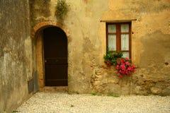 Vecchia finestra ed il portello Fotografia Stock