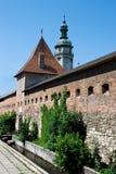 Vecchia fortezza a Lviv Ucraina fotografia stock libera da diritti