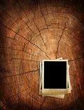Vecchia foto sul ceppo di albero illustrazione vettoriale