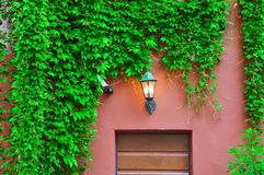 Vecchia lampada sulla parete Fotografie Stock