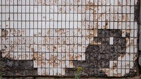 Vecchia lastra di cemento armato delle mattonelle sopravvissuta e nociva fotografia stock libera da diritti