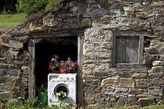 Vecchia lavatrice utilizzata come piantatrice Immagini Stock