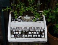 Vecchia macchina da scrivere con il fiore Fotografia Stock Libera da Diritti