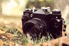Vecchia macchina fotografica in un parco in autunno Immagine Stock Libera da Diritti