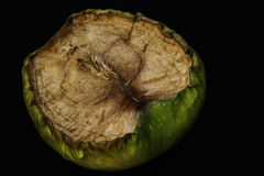Vecchia mela verde Fotografia Stock Libera da Diritti
