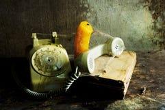 Vecchia natura morta del telefono Immagini Stock