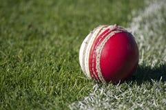 Vecchia palla da cricket Fotografia Stock