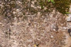 Vecchia parete Immagini Stock