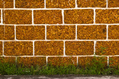 Vecchia parete alla sosta di Ayutthaya del mondo di eredità fotografia stock