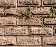 Vecchia parete dai blocchetti del granito Fotografie Stock
