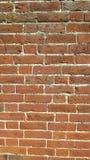 Vecchia parete dei mattoni Fotografia Stock