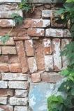 Vecchia parete del mattone Immagini Stock Libere da Diritti