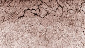Vecchia parete dell'argilla, capanna del fango, argilla incrinata fotografia stock libera da diritti
