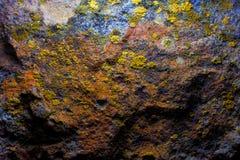 Vecchia parete della caverna con la muffa ed il muschio Fotografia Stock