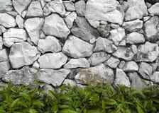Vecchia parete della roccia Fotografia Stock Libera da Diritti