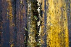 Vecchia parete di colore Fotografie Stock
