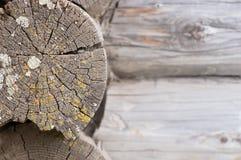 Vecchia parete di legno del ceppo Fotografie Stock
