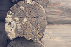 Vecchia parete di legno del ceppo Immagini Stock Libere da Diritti