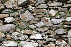 Vecchia parete di pietra, con l'edera Immagini Stock Libere da Diritti