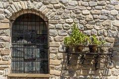 Vecchia parete di pietra con la finestra e le piante Fotografia Stock Libera da Diritti