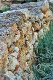 Vecchia parete di pietra con muschio ed il lichene Fotografia Stock