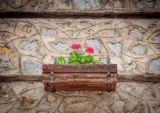 Vecchia parete di pietra della Camera con i fiori nel vaso immagini stock