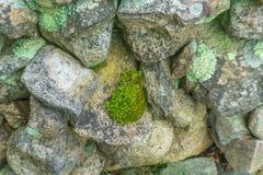 Vecchia parete di pietra muscosa Nuova Inghilterra Padnaram Dartmouth Massachusett Fotografia Stock