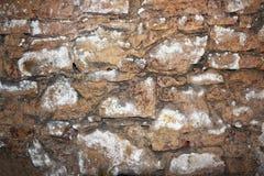 Vecchia parete di pietra sul seminterrato Immagini Stock Libere da Diritti