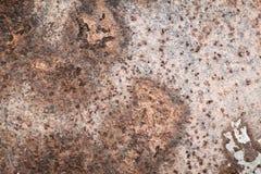 Vecchia parete di superficie del metallo arrugginito Immagini Stock