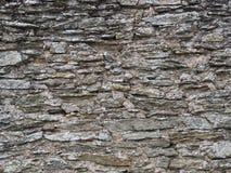 Vecchia parete grigia dell'ardesia Fotografie Stock Libere da Diritti