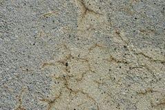 Vecchia parete incrinata del cemento Immagine Stock Libera da Diritti