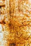 Vecchia parete rustica strutturata del metallo fotografia stock libera da diritti