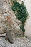 Vecchia parete strutturata Fotografia Stock