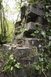 Vecchia parete tagliata dei mattoni di pietra in un'area boscosa Immagini Stock Libere da Diritti