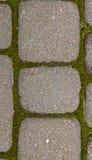 Vecchia pavimentare-pietra immagine stock