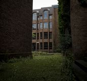 Vecchia pavimentazione con le erbacce e l'erba fotografia stock libera da diritti