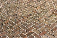 Vecchia pavimentazione del mattone Fotografia Stock