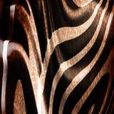 Vecchia pelle della zebra Fotografia Stock