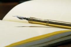 Vecchia penna Immagine Stock Libera da Diritti