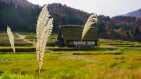 Vecchia pietra nel Giappone Immagine Stock Libera da Diritti