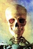 Vecchia pittura a olio di un cranio umano Fotografia Stock