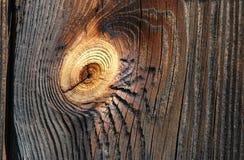 Vecchia plancia del pino Fotografia Stock