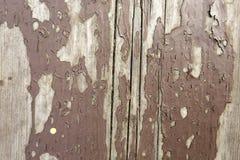 Vecchia plancia, struttura di legno Immagini Stock Libere da Diritti