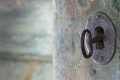 Vecchia porta antica verde Immagini Stock
