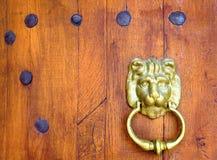 Vecchia porta di legno con una testa bronzea del leone Fotografia Stock